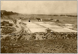 Salinas 1950